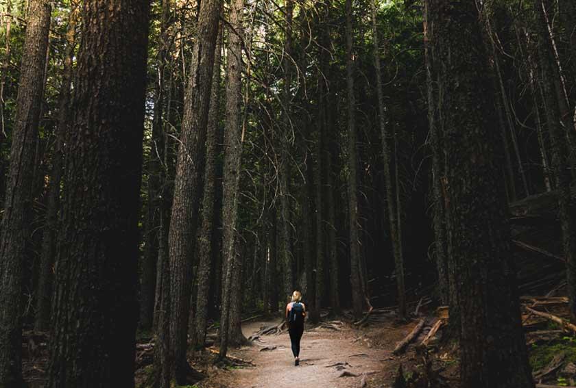 """Scopri lo Shinrin-Yoku: il """"bagno di foresta"""" che ti riconnette con la natura"""